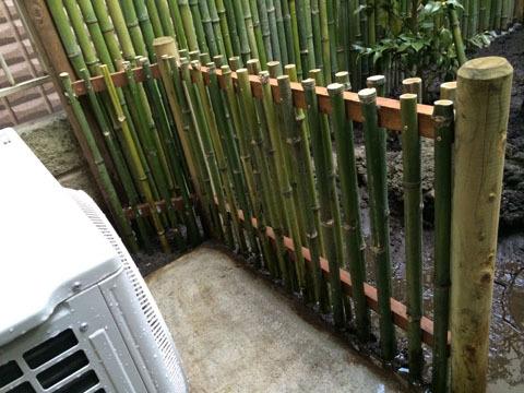 手前の竹垣