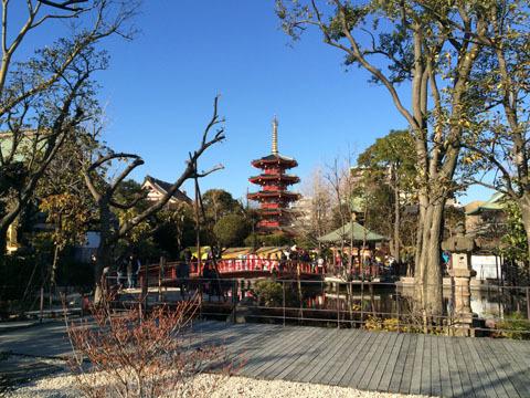 薬師殿方面から見た五重塔