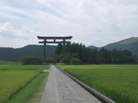 田んぼの先には日本一の大鳥居が