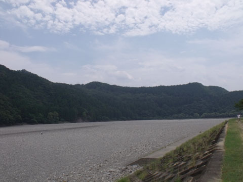 土手から見た熊野川