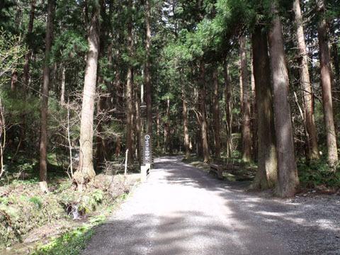 神社からロープウェイ山麓駅へと向かう「万葉の道」