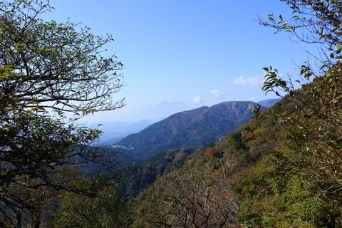 富士山がばっちり見えた