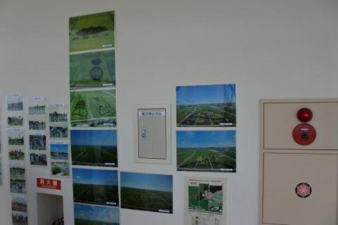 過去の田んぼアートの写真