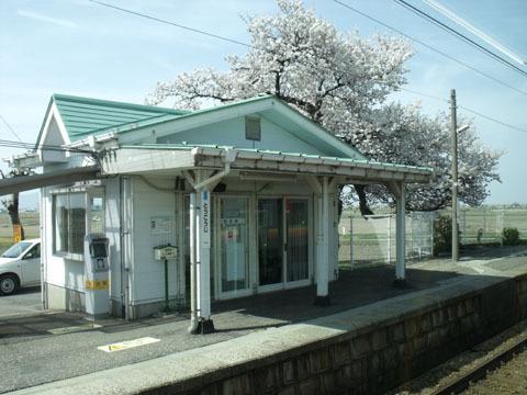 東光寺駅でも桜が満開
