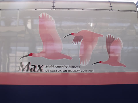 Max=Multi Amenity Express