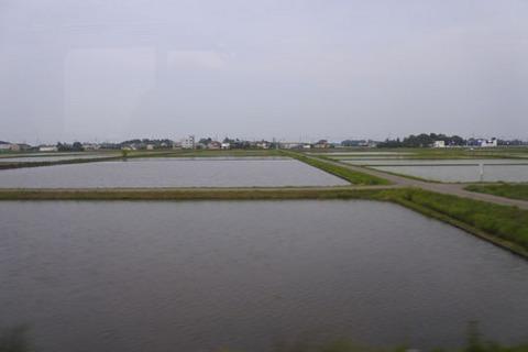 田んぼの向こうは海