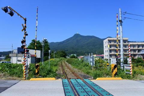 途中の踏切から大湊駅方面を見る
