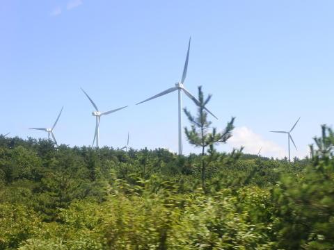 海の反対側には風力発電施設が点在