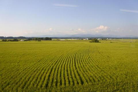 平地になり秋田の米作地帯が広がる