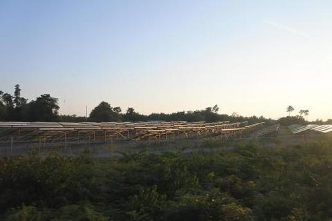 大量に並んだソーラーパネル