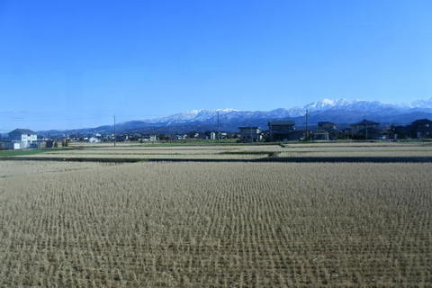 田んぼ越しの立山連峰