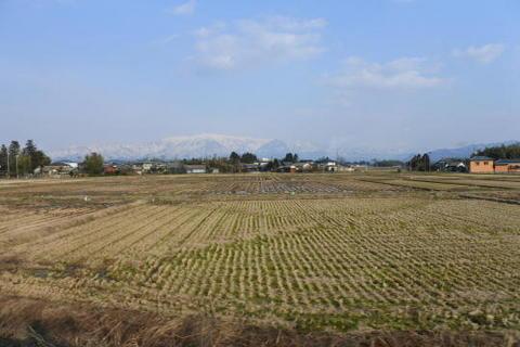 新潟の米どころを行く