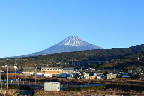 今年は富士山がばっちり見えた