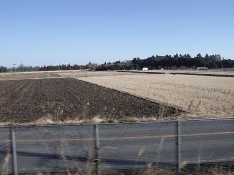 広々とした畑が続く