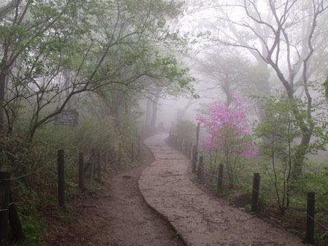 女体山頂への道
