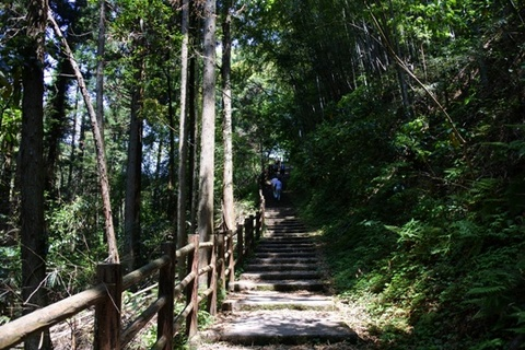 遊歩道は養老川をまたぎ上り階段へ