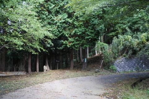 林道を横切る箇所もあり