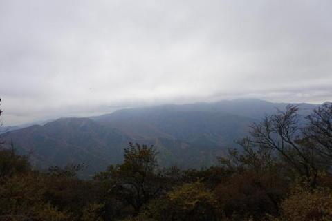 やはり富士山は見えず…