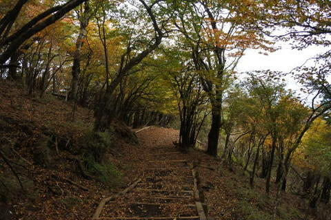 秋らしい風景