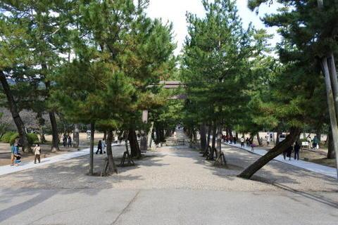 松並木の両脇が現在の参道