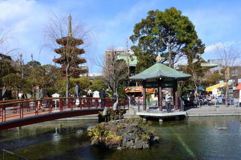 本殿~薬師殿間にある池