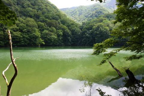 十二湖中でも大きめの池