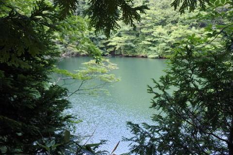 やや青みがかった湖面