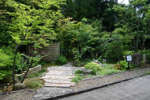 見本庭園の一部