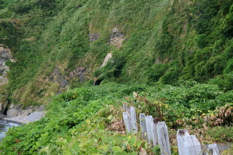 海側には旧線と思われるトンネル入り口がかすかに見える