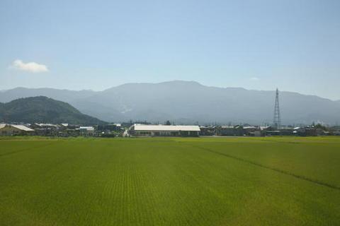 水田の向こうの山にスキー場のゲレンデが見える