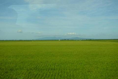 秋田の米どころを進む