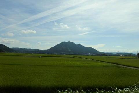山方向も田んぼ