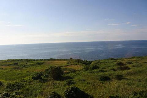 海沿いに広がる草原