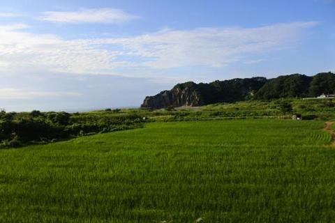 田んぼと岩山